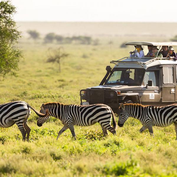 Active Safaris