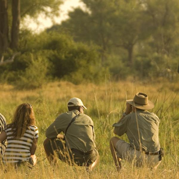 Privately Guided Safari